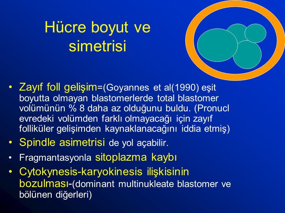 Hücre boyut ve simetrisi
