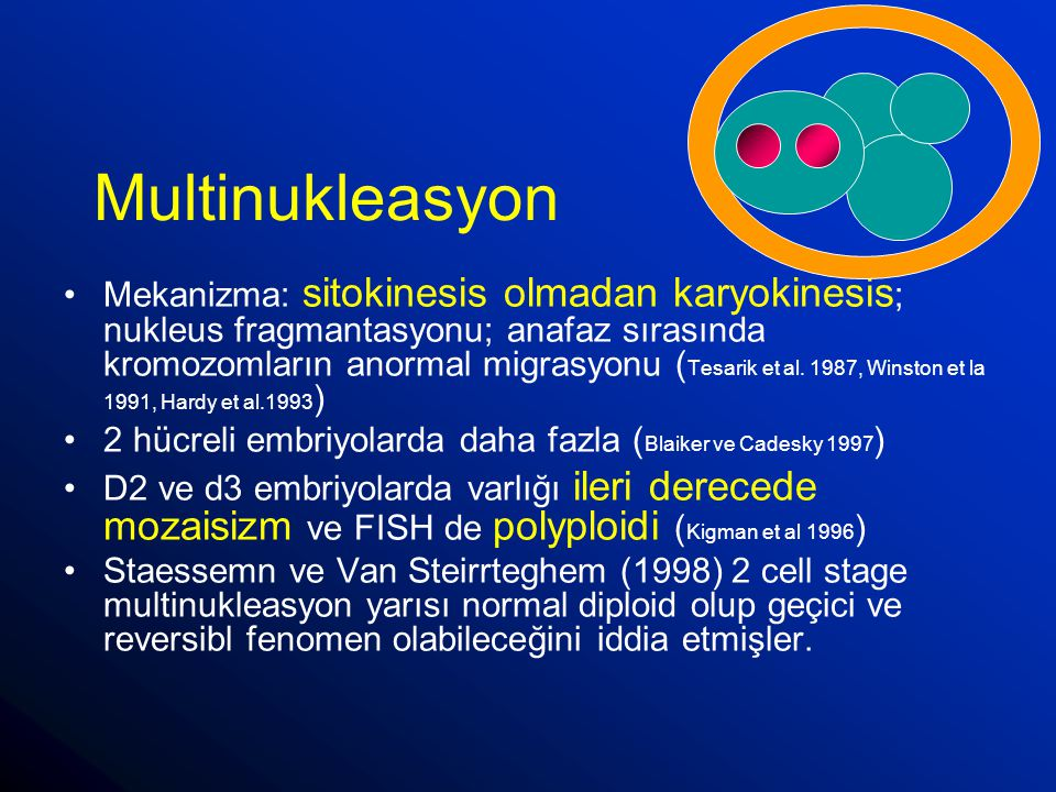 Multinukleasyon