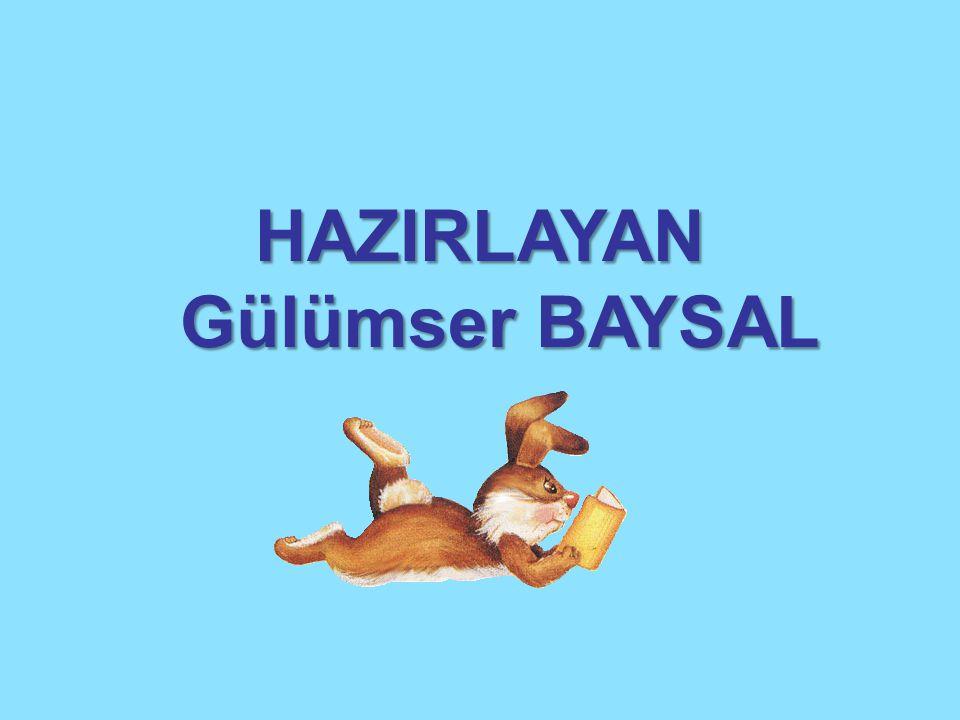 HAZIRLAYAN Gülümser BAYSAL