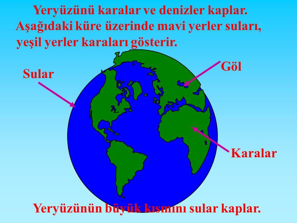Yeryüzünü karalar ve denizler kaplar.