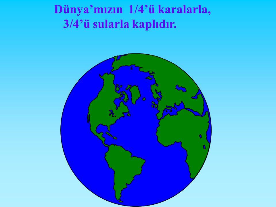 Dünya'mızın 1/4'ü karalarla,