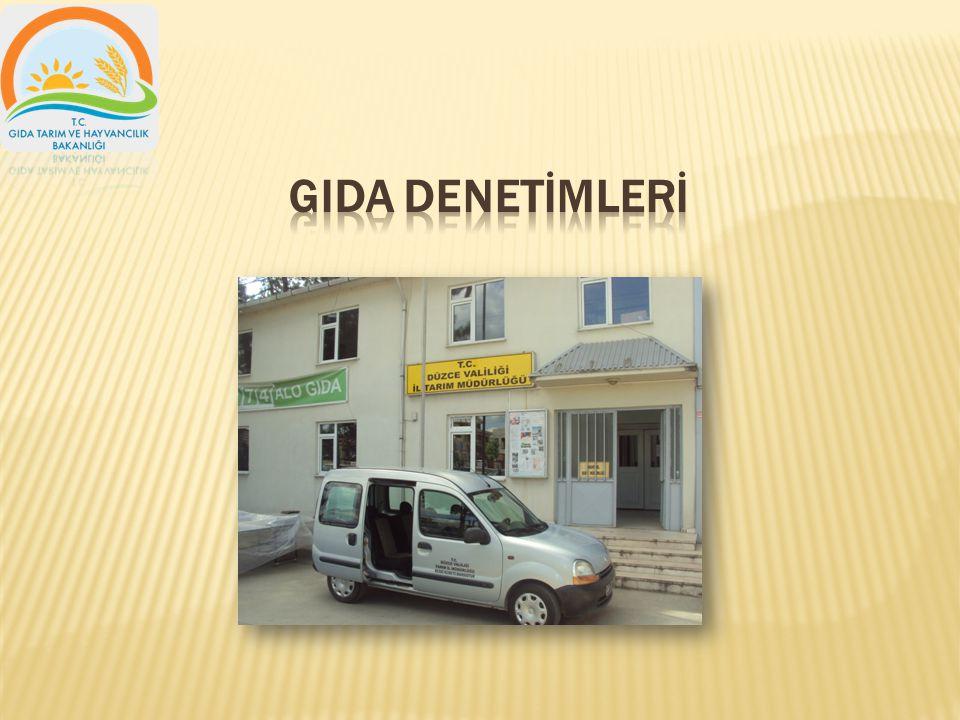 GIDA DENETİMLERİ