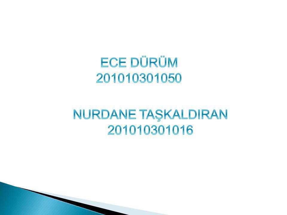ECE DÜRÜM 201010301050 NURDANE TAŞKALDIRAN 201010301016