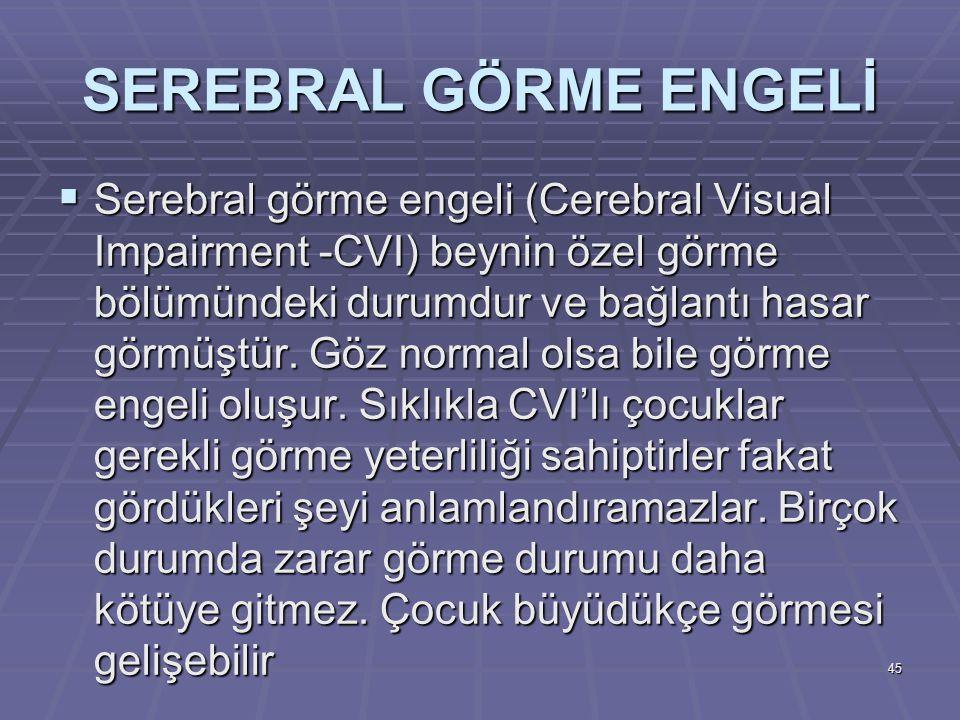 SEREBRAL GÖRME ENGELİ