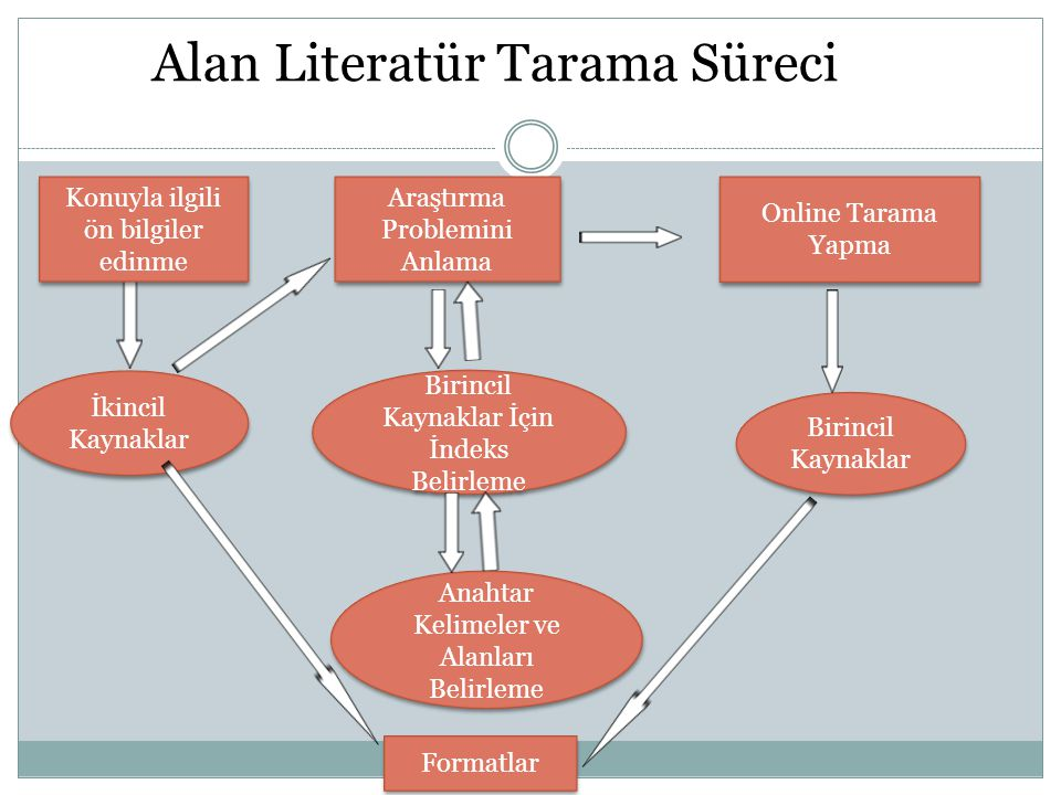 Alan Literatür Tarama Süreci