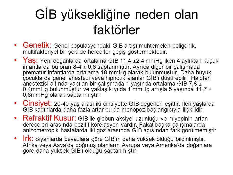 GİB yüksekliğine neden olan faktörler