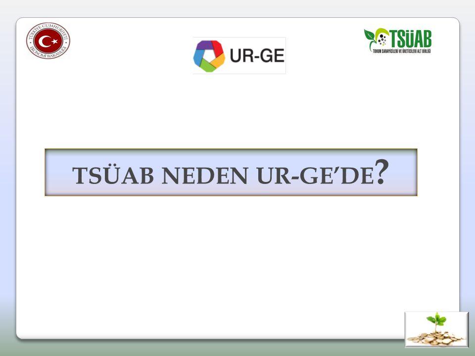 TSÜAB NEDEN UR-GE'DE