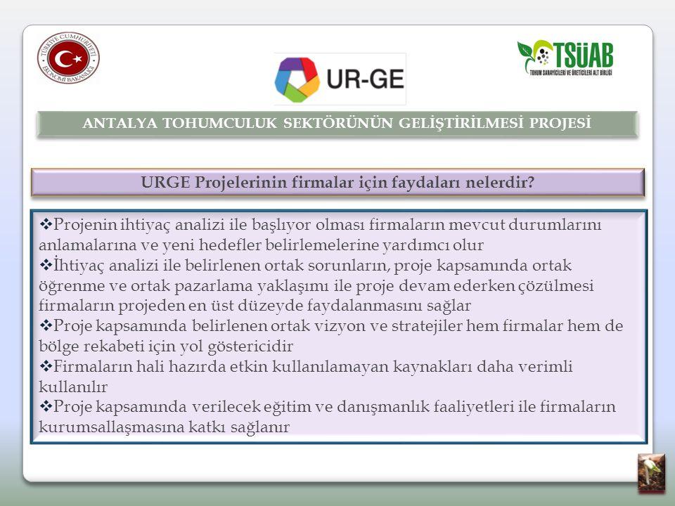 URGE Projelerinin firmalar için faydaları nelerdir