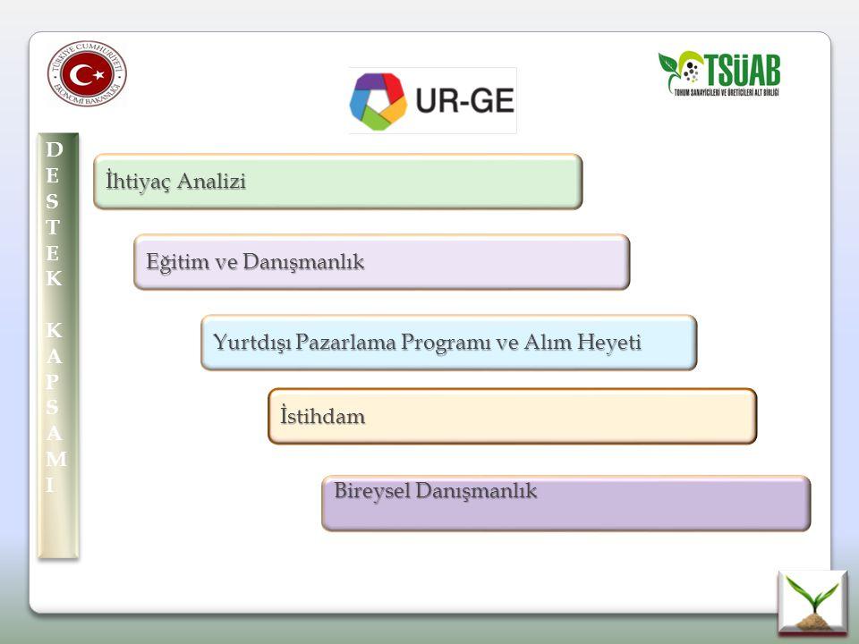 DE S. T. E. K. KAP. AMI. İhtiyaç Analizi. Eğitim ve Danışmanlık. Yurtdışı Pazarlama Programı ve Alım Heyeti.
