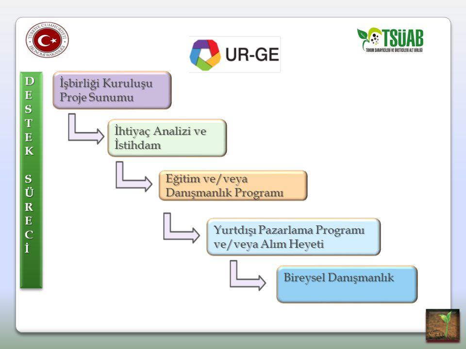 DE S. T. E. K. SÜR. C. İ. İşbirliği Kuruluşu Proje Sunumu. İhtiyaç Analizi ve İstihdam. Eğitim ve/veya Danışmanlık Programı.