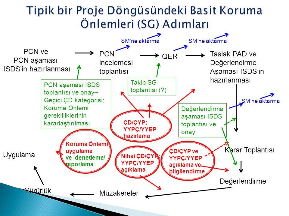 Tipik bir Proje Döngüsündeki Basit Koruma Önlemleri (SG) Adımları