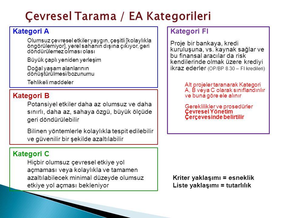 Çevresel Tarama / EA Kategorileri