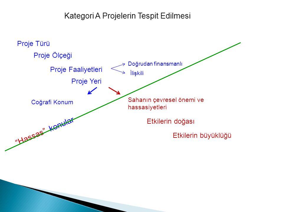 Kategori A Projelerin Tespit Edilmesi