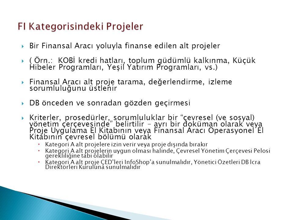 FI Kategorisindeki Projeler