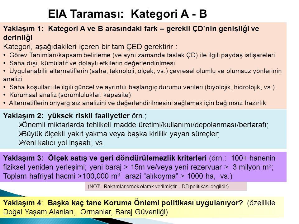 EIA Taraması: Kategori A - B