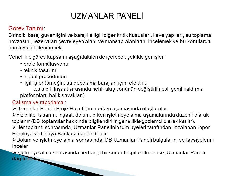 UZMANLAR PANELİ Görev Tanımı: proje formülasyonu