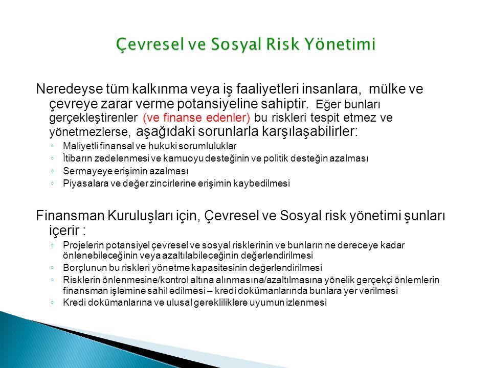 Çevresel ve Sosyal Risk Yönetimi