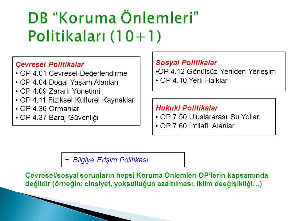 DB Koruma Önlemleri Politikaları (10+1)
