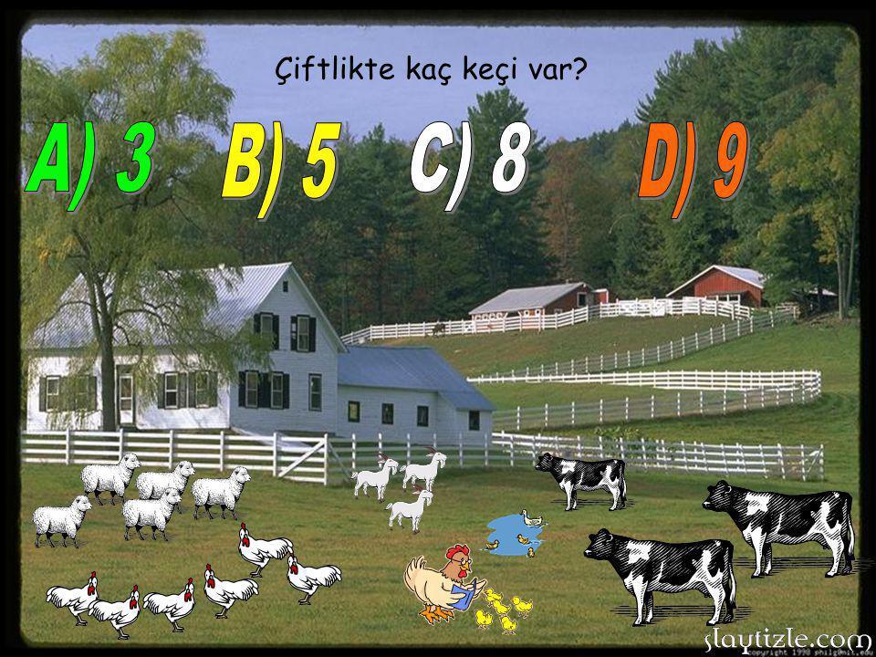 Çiftlikte kaç keçi var A) 3 B) 5 C) 8 D) 9