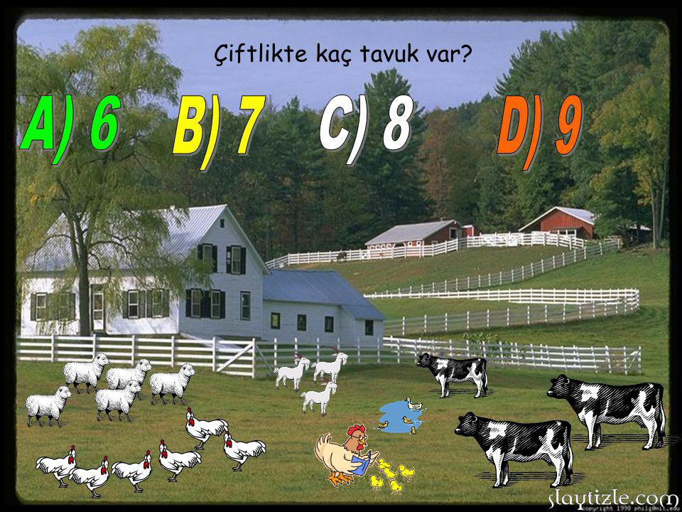 Çiftlikte kaç tavuk var