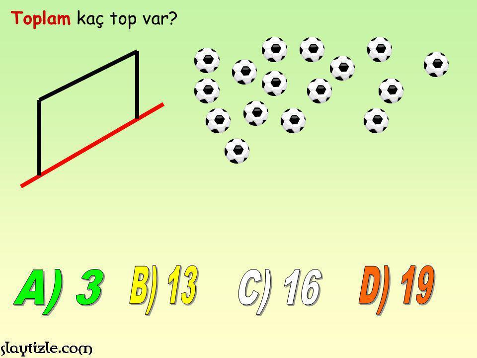 Toplam kaç top var B) 13 D) 19 A) 3 C) 16