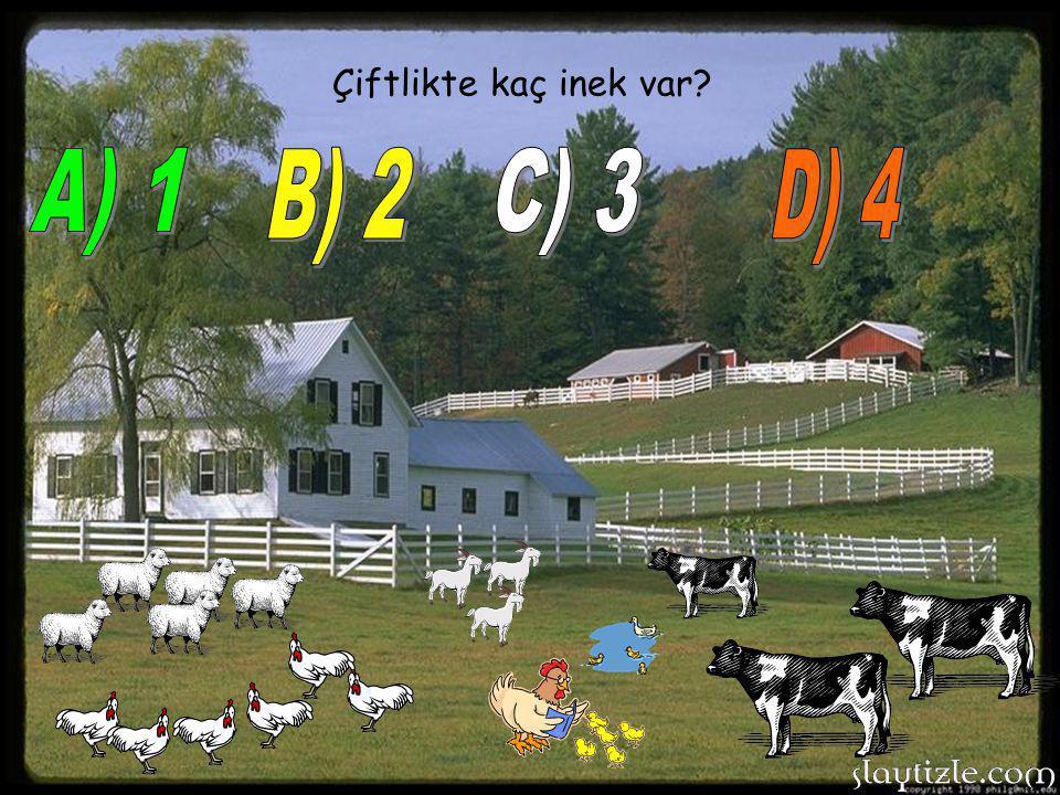 Çiftlikte kaç inek var A) 1 B) 2 C) 3 D) 4