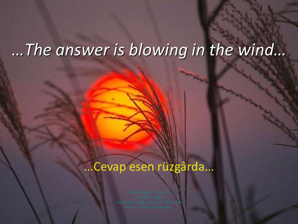 …The answer is blowing in the wind…