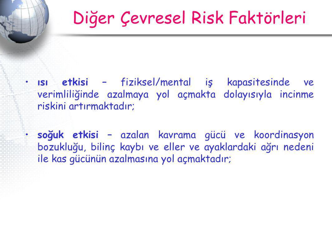 Diğer Çevresel Risk Faktörleri
