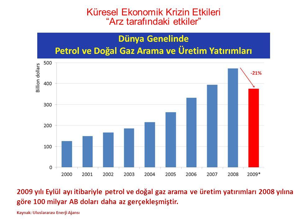 Petrol ve Doğal Gaz Arama ve Üretim Yatırımları