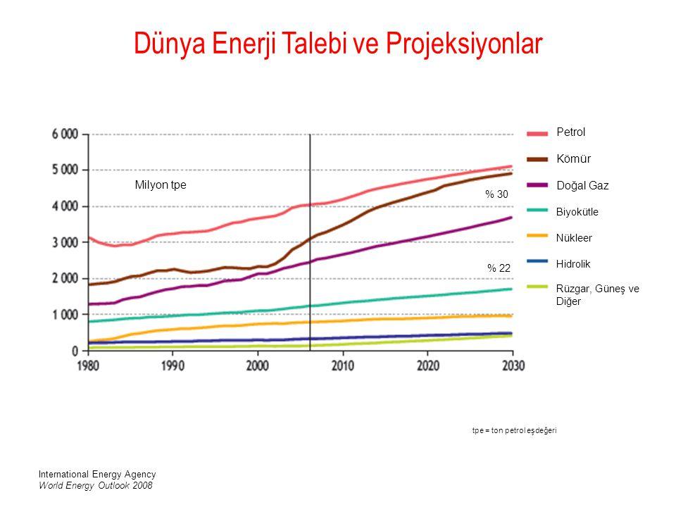 Dünya Enerji Talebi ve Projeksiyonlar