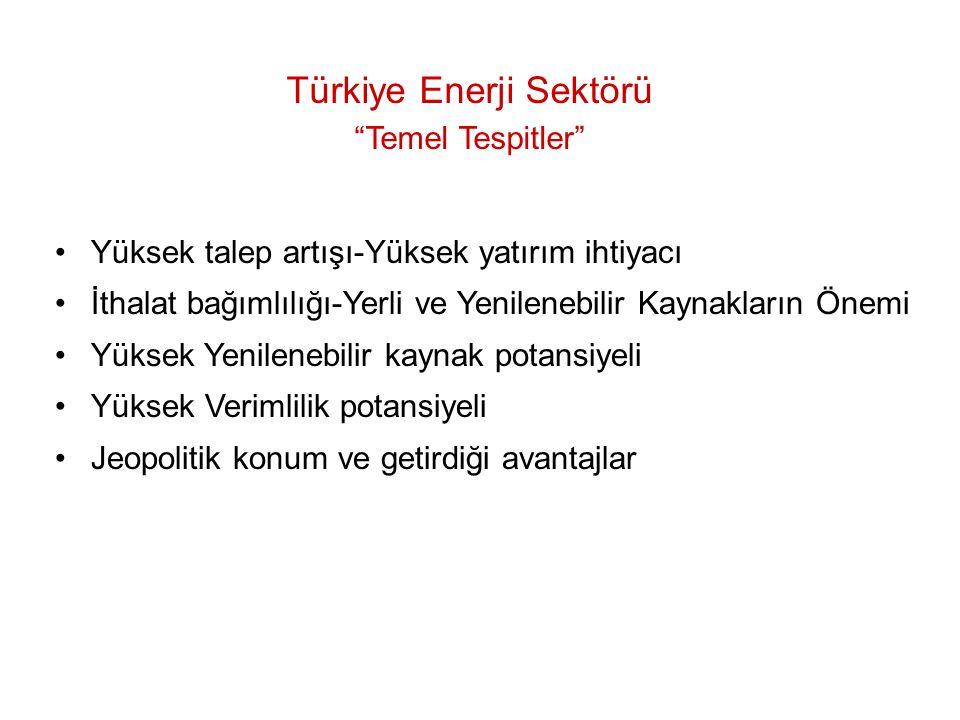 Türkiye Enerji Sektörü Temel Tespitler