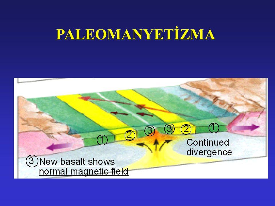 PALEOMANYETİZMA
