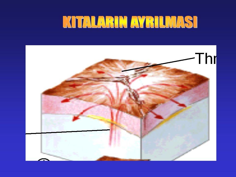 KITALARIN AYRILMASI