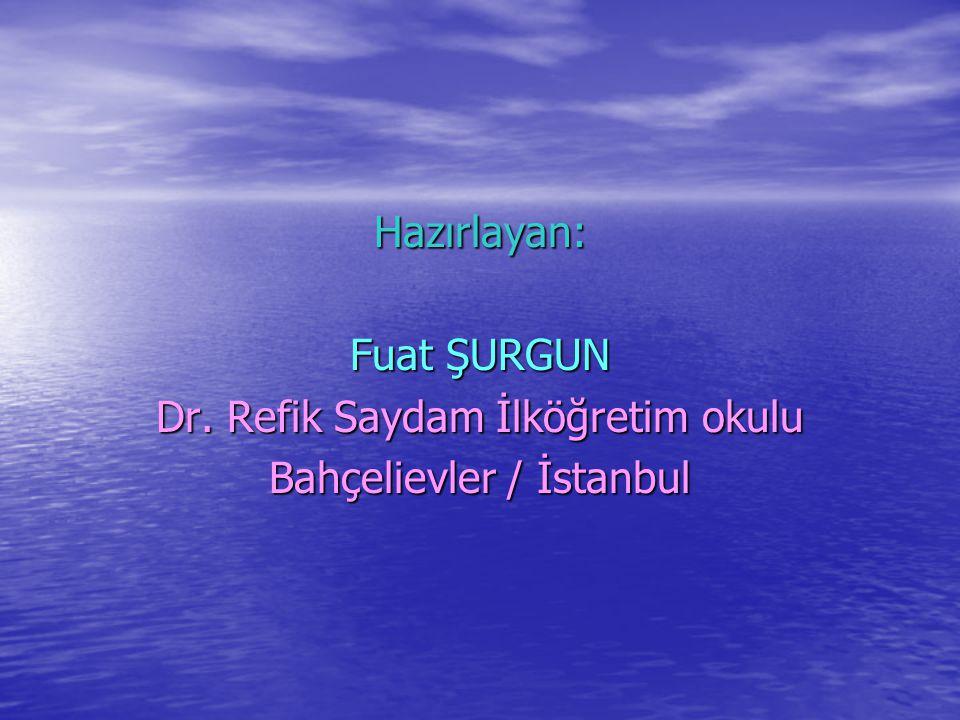 Dr. Refik Saydam İlköğretim okulu Bahçelievler / İstanbul