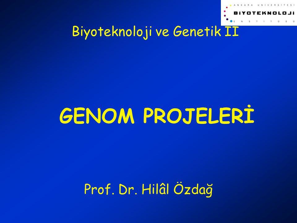 Biyoteknoloji ve Genetik II