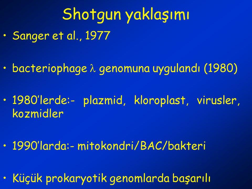 Shotgun yaklaşımı Sanger et al., 1977