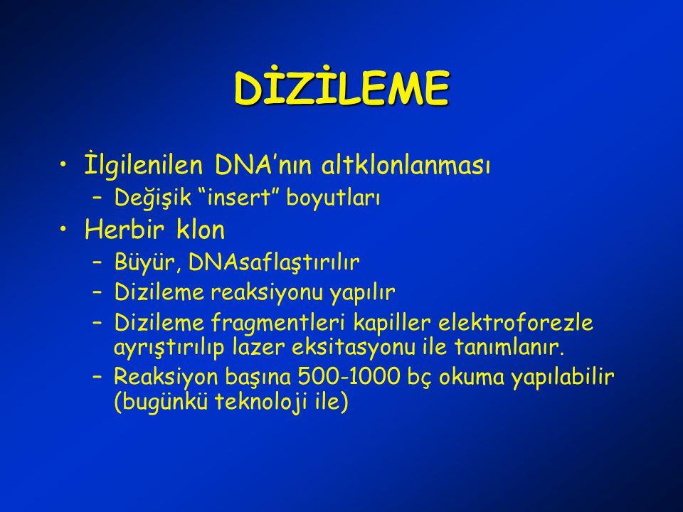 DİZİLEME İlgilenilen DNA'nın altklonlanması Herbir klon