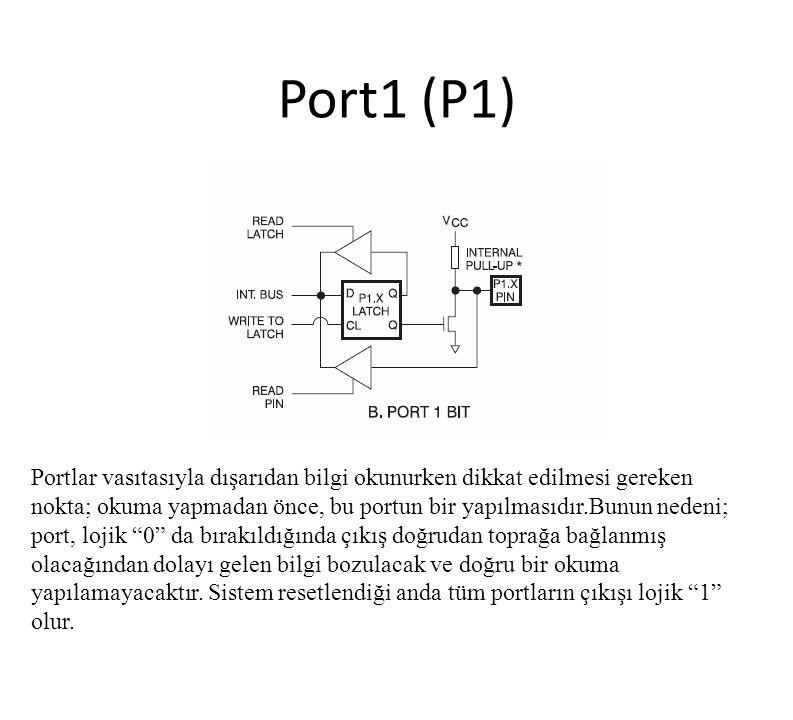 Port1 (P1)