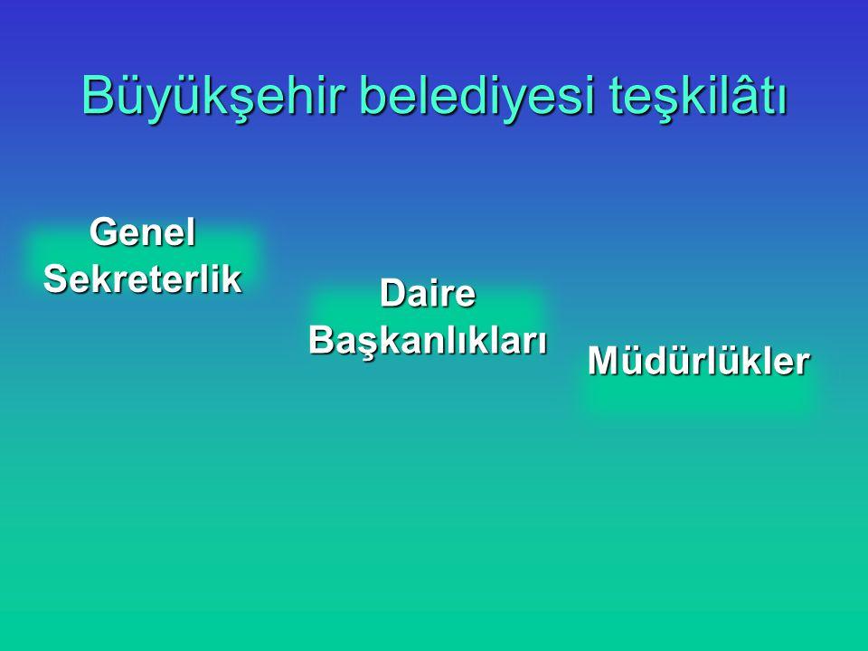 Büyükşehir belediyesi teşkilâtı