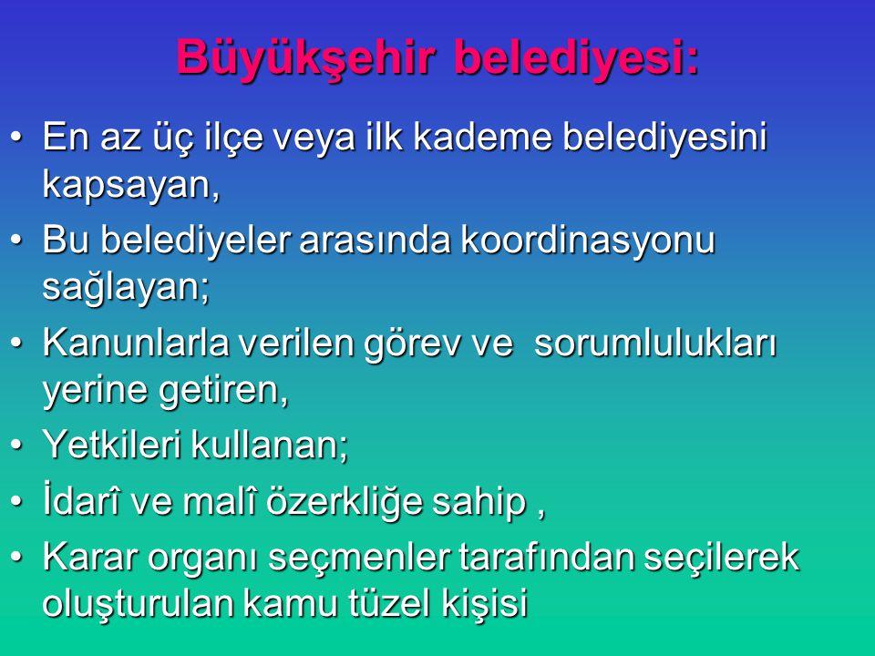 Büyükşehir belediyesi: