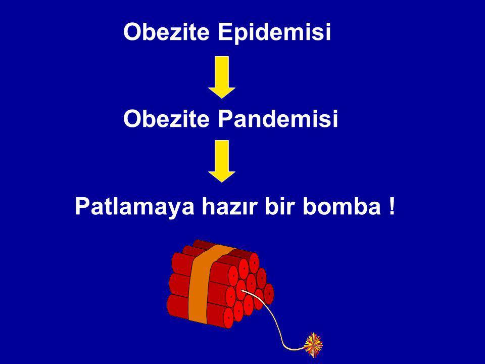 Obezite Epidemisi Obezite Pandemisi Patlamaya hazır bir bomba !