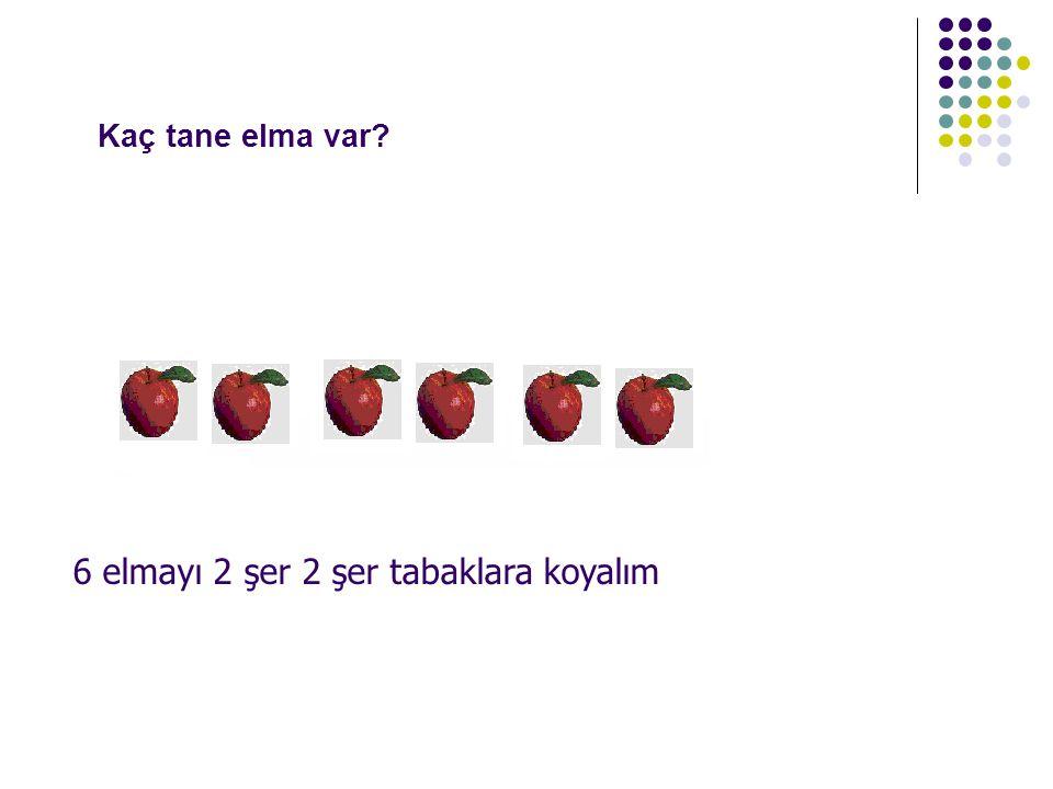 Kaç tane elma var 6 elmayı 2 şer 2 şer tabaklara koyalım