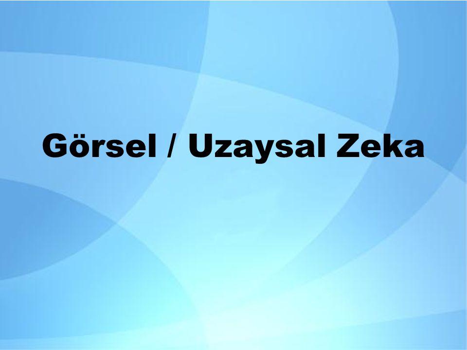 Görsel / Uzaysal Zeka