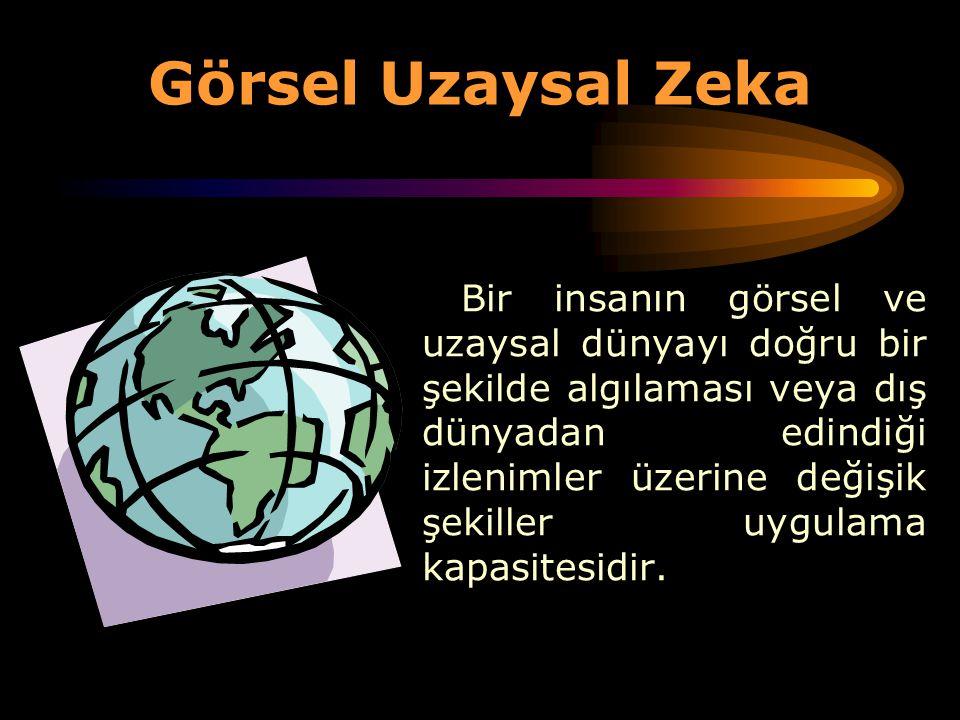 Görsel Uzaysal Zeka
