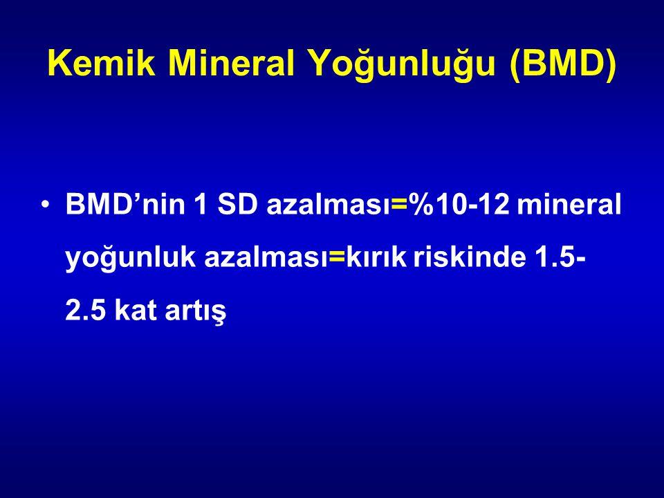Kemik Mineral Yoğunluğu (BMD)