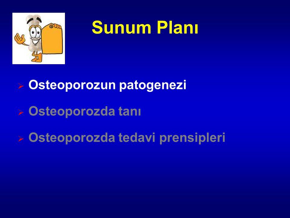Sunum Planı Osteoporozun patogenezi Osteoporozda tanı