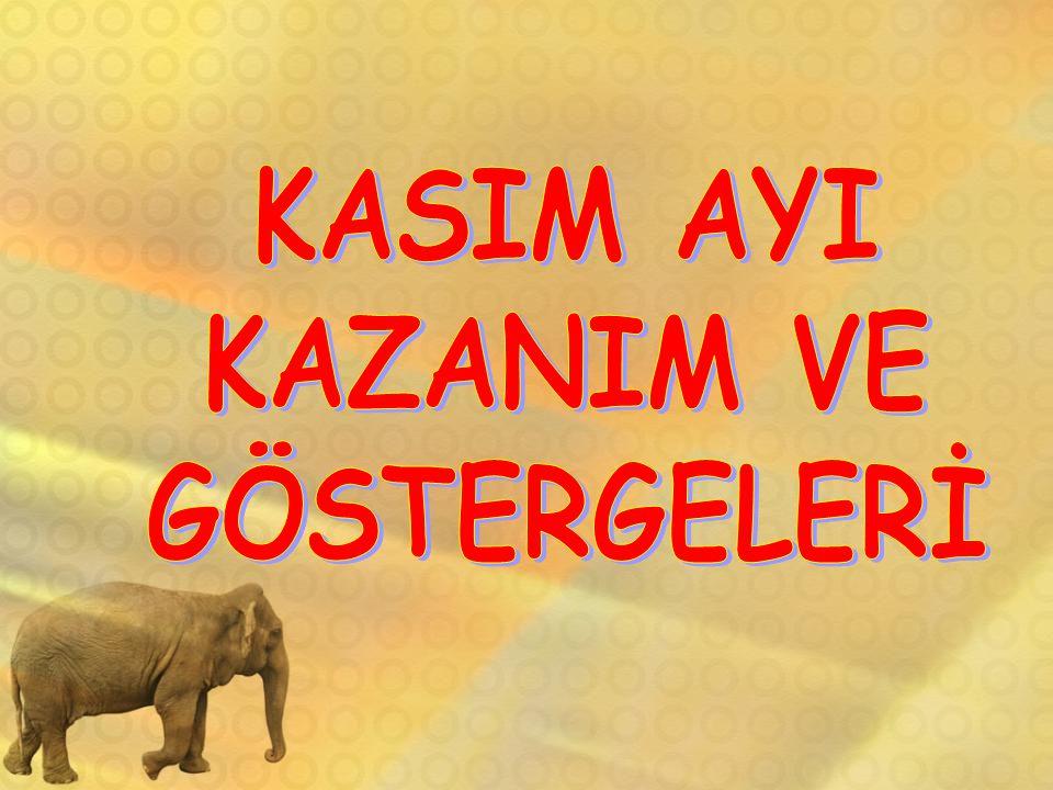 KASIM AYI KAZANIM VE GÖSTERGELERİ