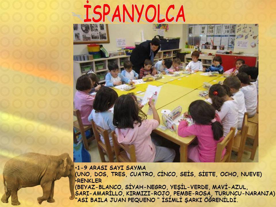 İSPANYOLCA 1-9 ARASI SAYI SAYMA
