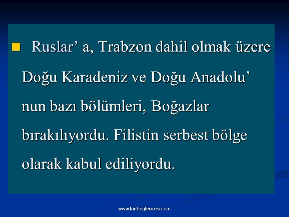 Ruslar' a, Trabzon dahil olmak üzere Doğu Karadeniz ve Doğu Anadolu' nun bazı bölümleri, Boğazlar bırakılıyordu. Filistin serbest bölge olarak kabul ediliyordu.