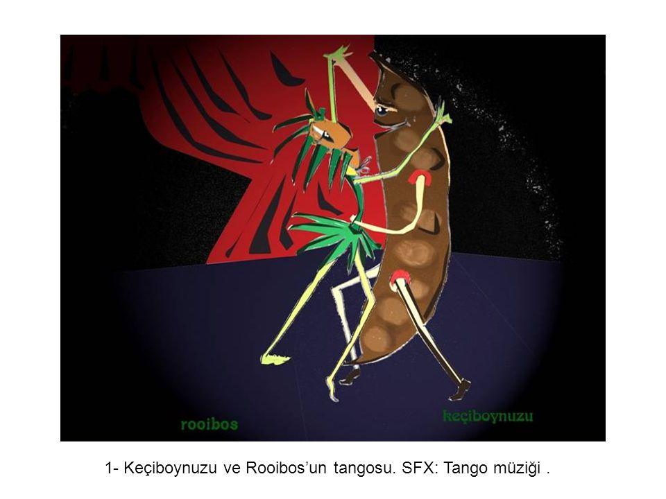 Yaratıcı Yaklaşım 1- Keçiboynuzu ve Rooibos'un tangosu. SFX: Tango müziği .